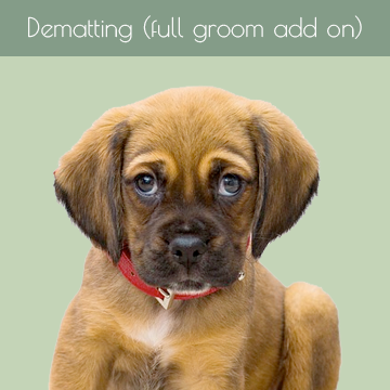 Dematting (full groom add on)