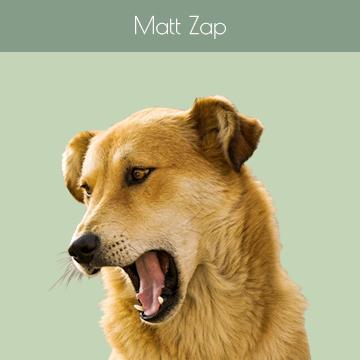 Matt Zap