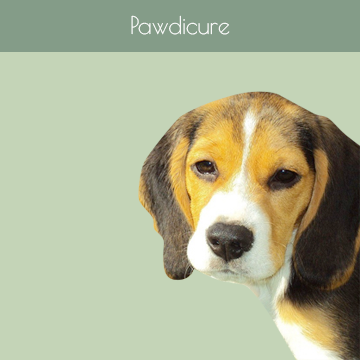 Pawdicure