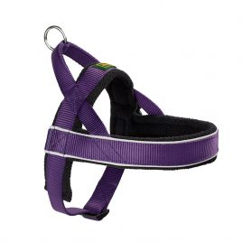 Hunter Violet Norwegian Harness XL