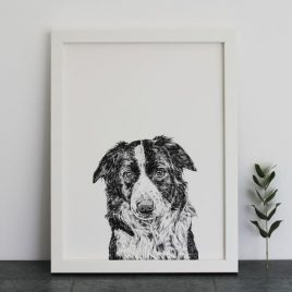 Ros Shiers Border Collie Print