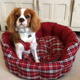 Red Tartan Cosy Bed Medium