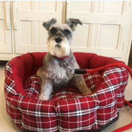 Red Tartan Cosy Bed Large