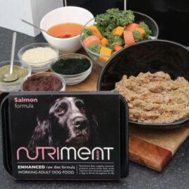 Nutriment Raw Salmon 500g